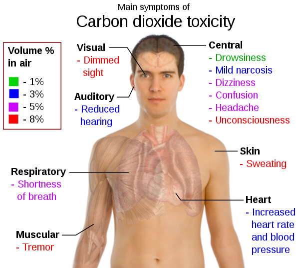 external image 595px-main_symptoms_of_carbon_dioxide_toxicity_svg.png